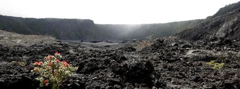 Volcano National Park, Kilauea Iki crater